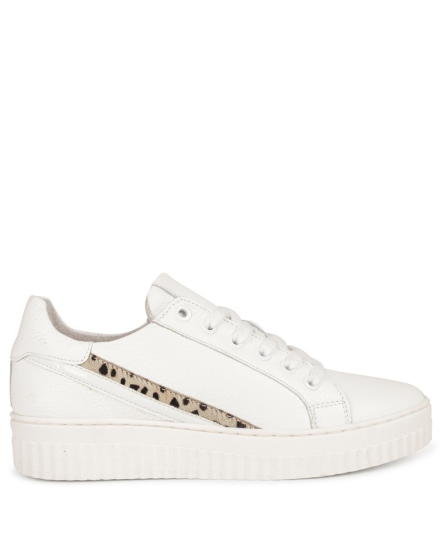 Sneaker basic streep cheetah wit