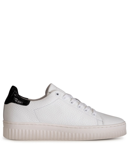 Shoecolate Lage sneaker Wit - 8.10.02.014.01